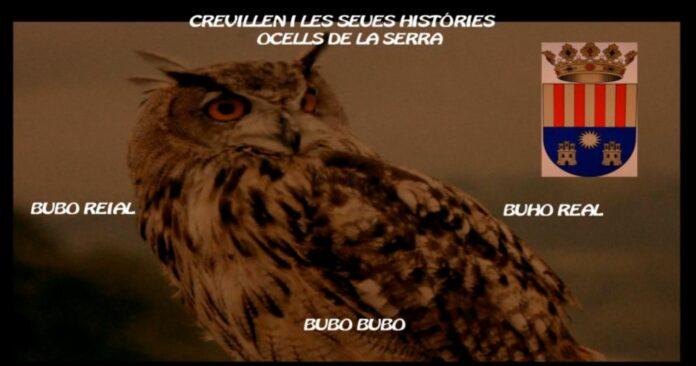 Crevillent, aves de su sierra