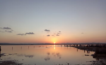 Torrevieja y su Laguna Rosa
